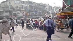 улица в Дели, люди, рикши, Индия