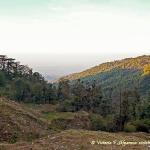 горы, природа, Маглеод гандж, Индия