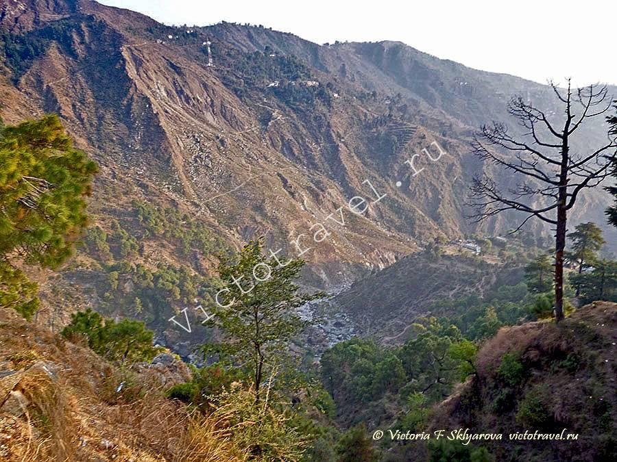 горные пейзажи, Баксу, Маклеод Гандж, Индия