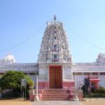Пушкар — место тысячи темплов, Индия