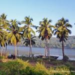 Как мы ехали в Гокарну из Гоа, Индия
