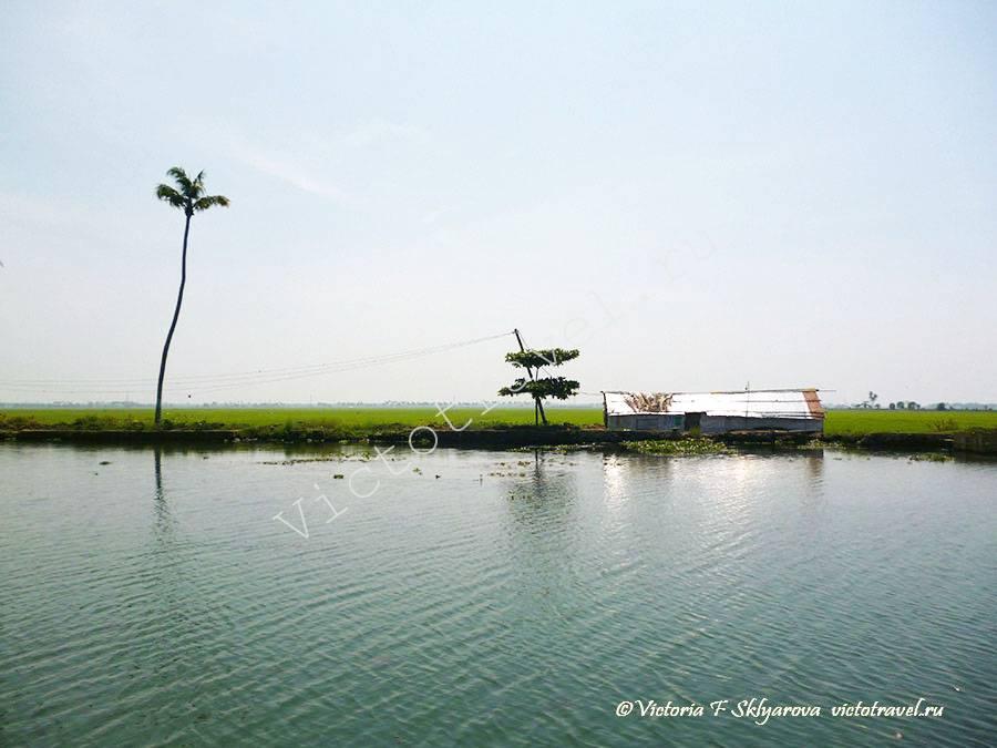 водная гладь, Аллепи, Керала Индия