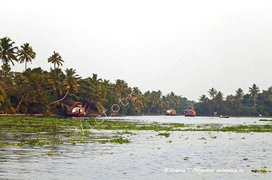 хаус бот, лодки, Алапуджа, Керала, Индия