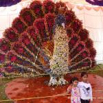 День в Бангалоре, Индия