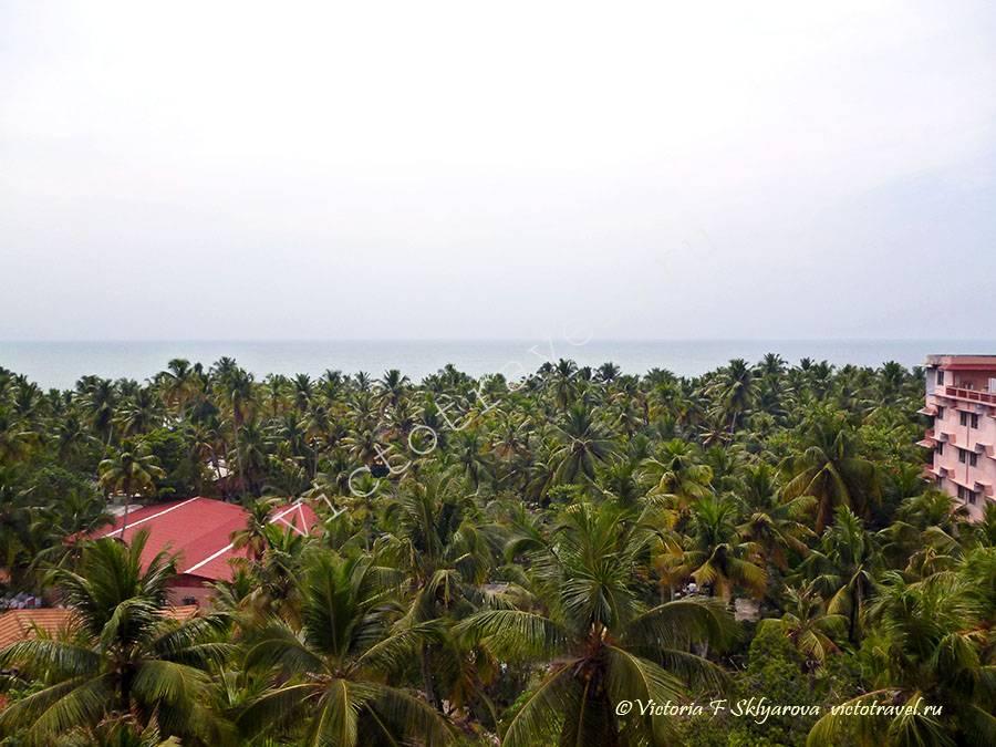вид из окна комнаты в Амма ашраме, Керала, Индия, февраль 2012г