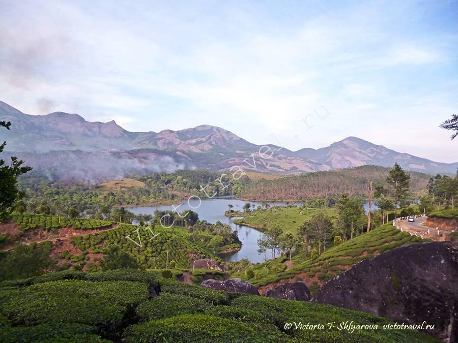 озеро посреди чайных плантаций, Муннар, Индия