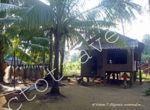 Деревня в лесу, Мьянма