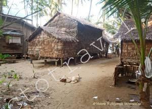 Дома из пальмовых листьев, Мьянма
