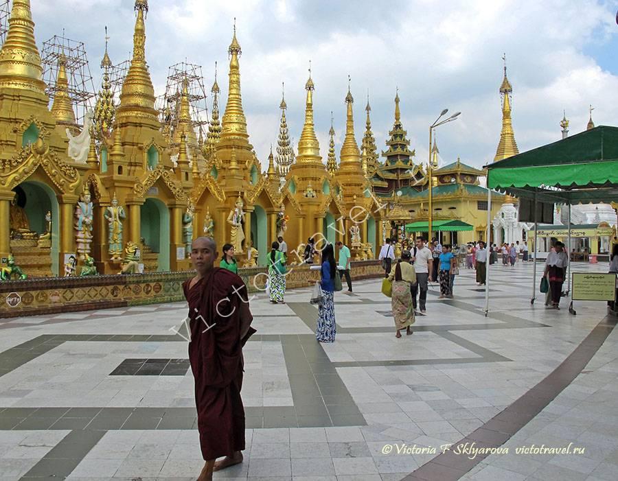 монах,Пагоды Шведагон, Янгон, Мьянма