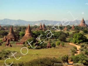 Баган, Мьянма-Bagan384
