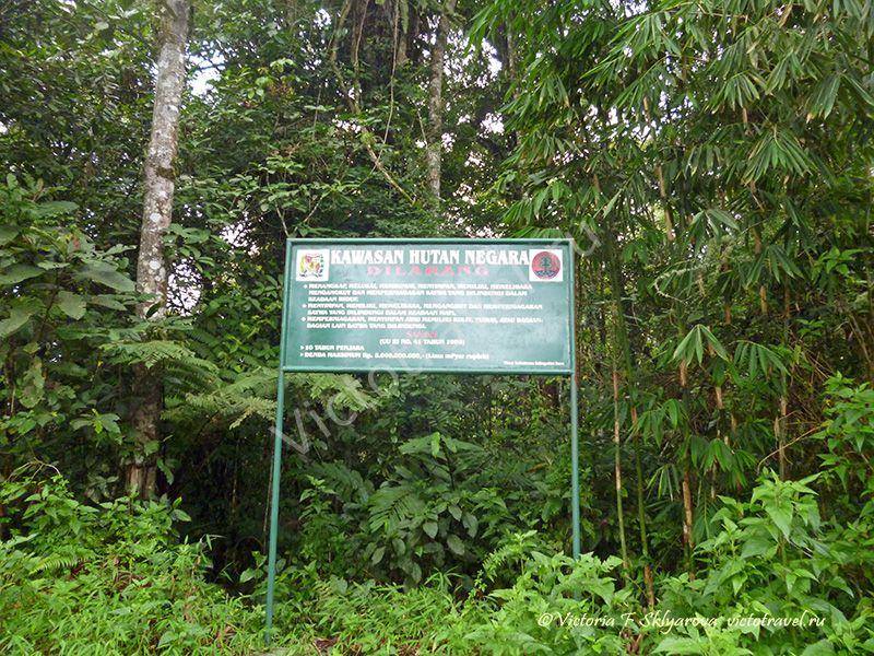 sumatra-berastagi-sibayak3