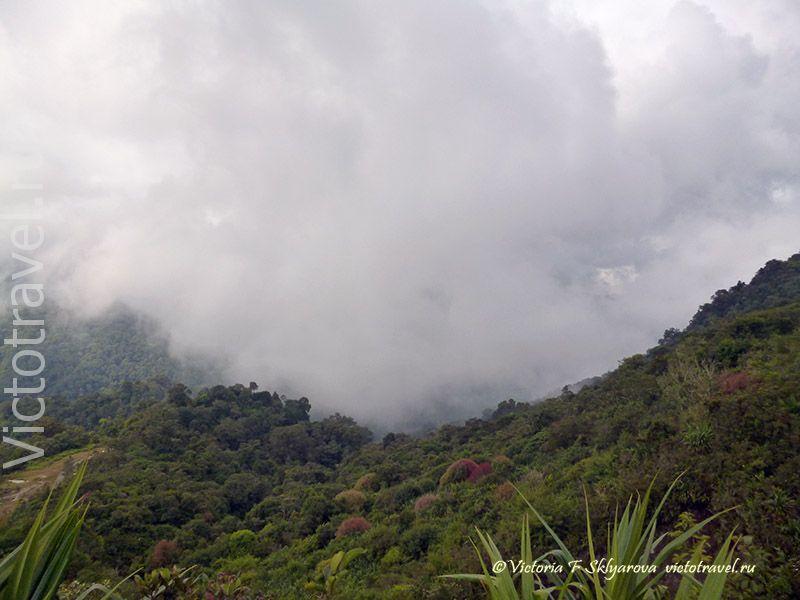 облака, холмы, лес, вулкан Сибаяк, Берастаги, Суматра, Индонезия