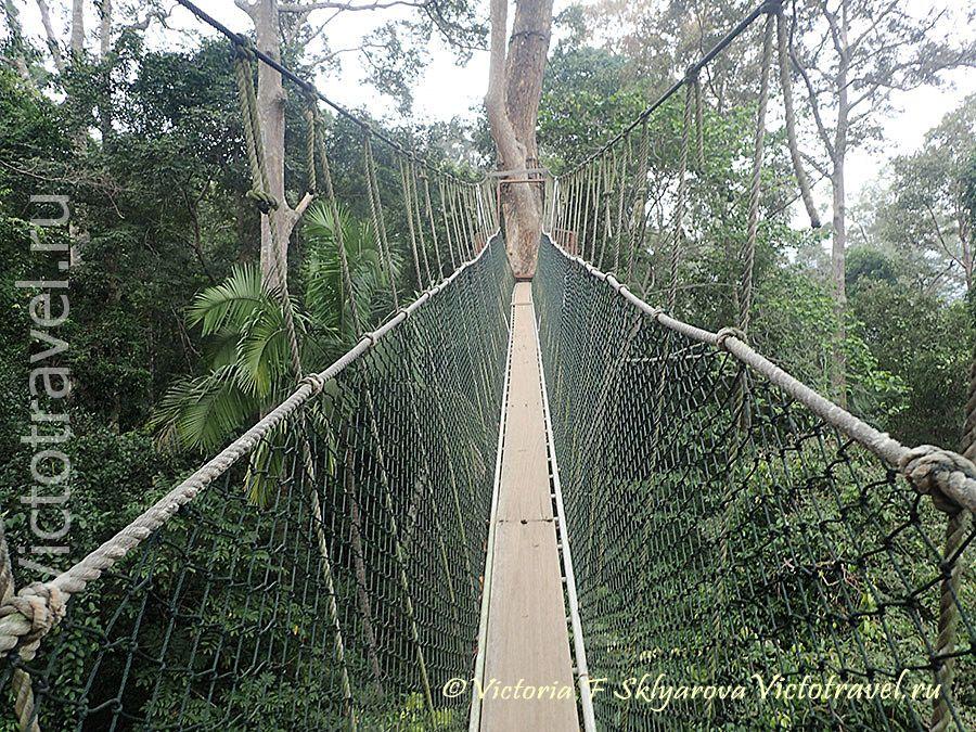 Таман Негара, подвесной мостик