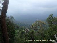 Таман Негоара, национальный парк, Малайзия, Паханг