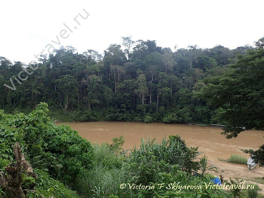 Таман Негара-национальный парк, Малайзия