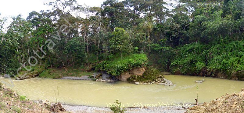 sumatra-bukit-lawang-31-32w