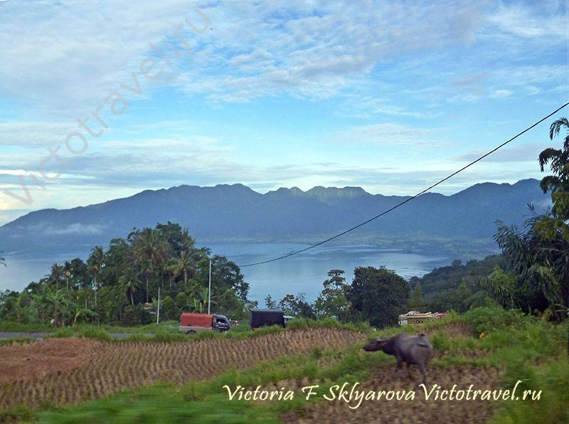 природа, Озеро Манинджау, Суматра, Индонезияsumatra-maninjaui41