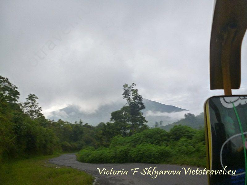 дорога, дерево, гора Мерапи, туча, западная Суматра, Индонезия