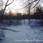 Зима, стих