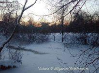 фото в парке зимой, для стихотворения