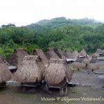 Бена Bena традиционная деревня, Флорес, Индонезия
