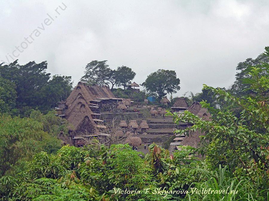 Вид на деревню Бена, остров Флорес, Индонезия