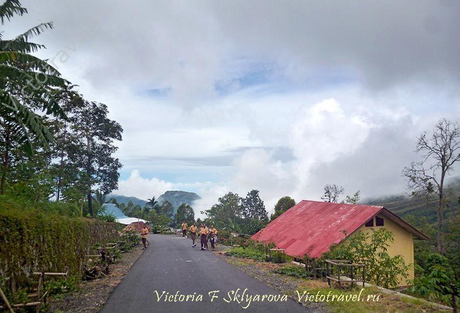 По пути в деревню Бена, Флорес, Индонезия